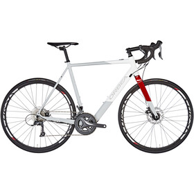ORBEA Gain D50, grey/white/red